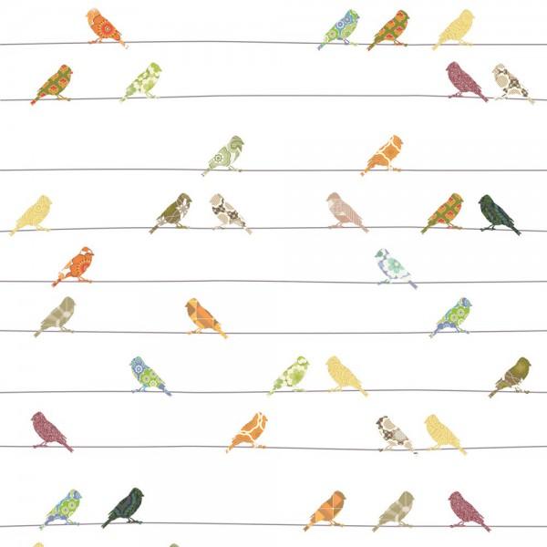 Inke Tapeten Wandbild Vögel bunt