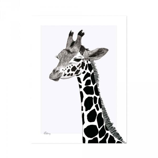 Lilipinso Poster Giraffe schwarz weiss