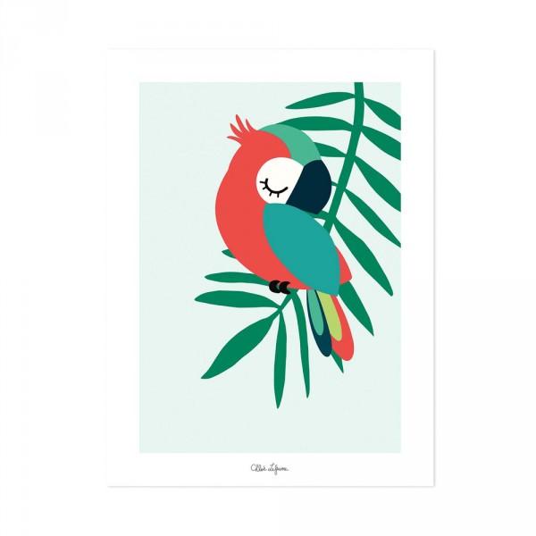 Lilipinso Poster schlafender Papagei grün rot