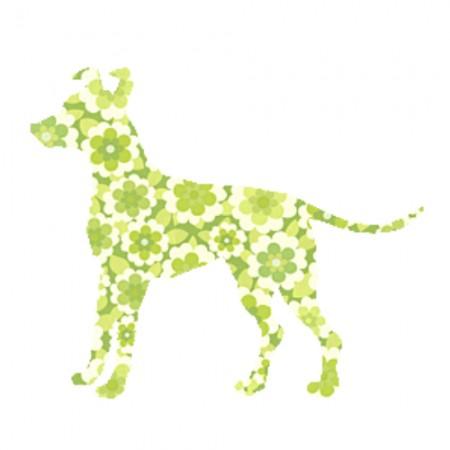Inke Tapetentier Blumen Hund grün