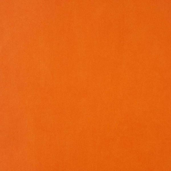 Caselio Girls only Tapete uni orange