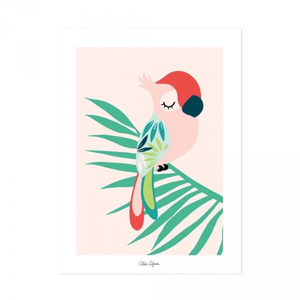 Lilipinso Poster schlafender Papagei rosa rot grün