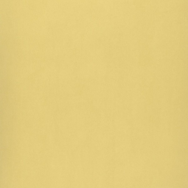Casadeco Unitapete gelbgrün Jules & Julie