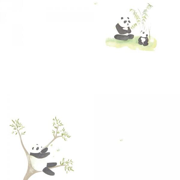 Casadeco Alice & Paul Tapete Panda Bären braun grün anthrazit